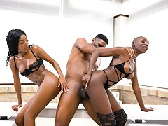 Ebony women share a best in marvelous scenes of bisexual porn