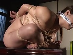 Japanese lady kinbaku