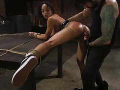Suspended black model Alexis Tae whipped together with fucked in the BDSM neighbourhood